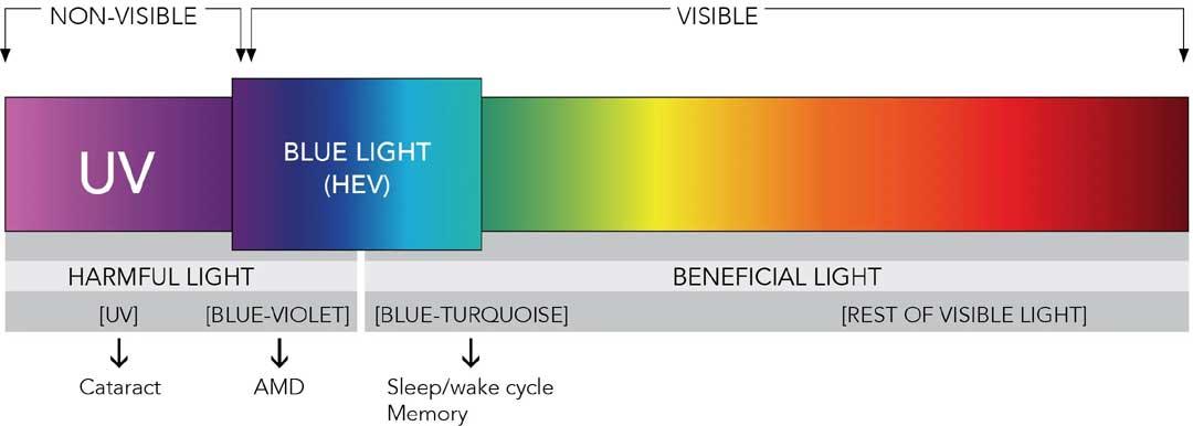 espectro de la luz visual